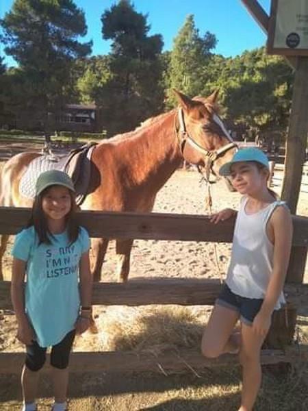 επαφή με τα άλογα
